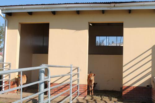 Tardi-College-Facilities-24